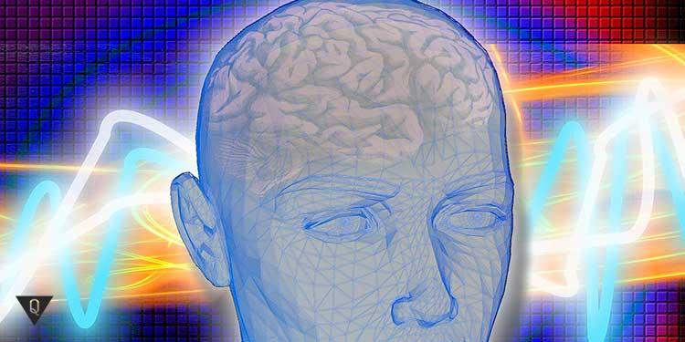нарисованный мозг человека