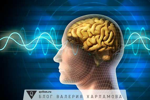 энергетика мозга