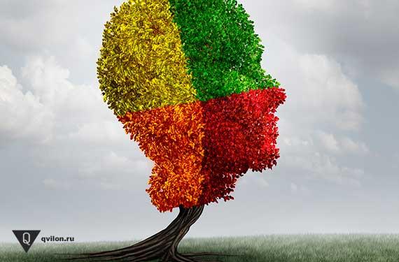 дерево в форме головы человека раскрашено в 4 цвета