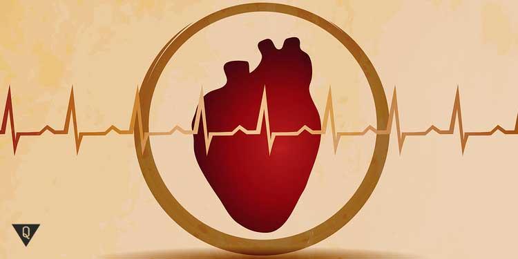нарисованное сердце и пульс