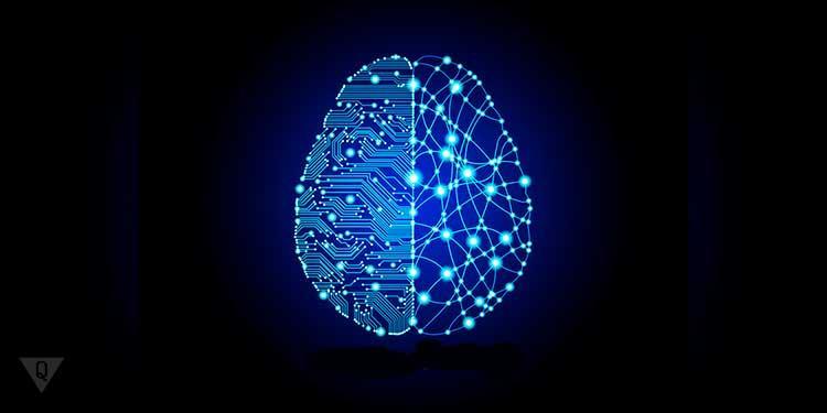 2 полушария мозга нарисованы в синем цвете