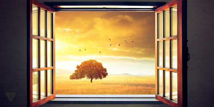 видно дерево в окне на закате