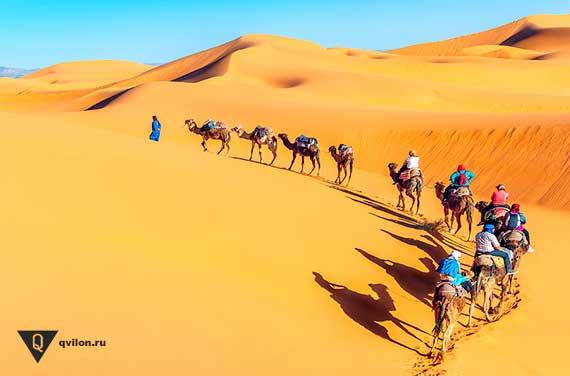 караван идет в пустыне