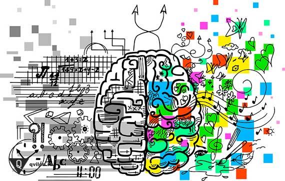 рисунок способностей полушарий мозга