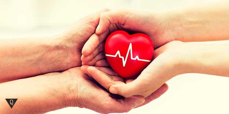 игрушечное сердце лежит в бережных руках
