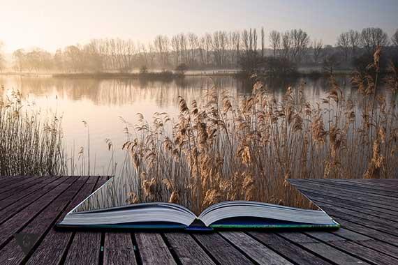 пейзаж речки оживает из книги