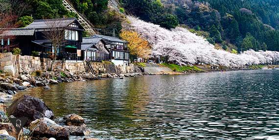 японский домик на берегу водоема