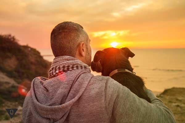 мужчина с собакой сидят на закате дня