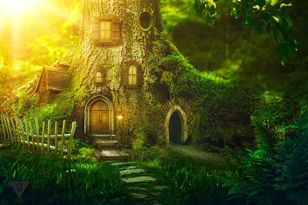 фантастический дом в дереве