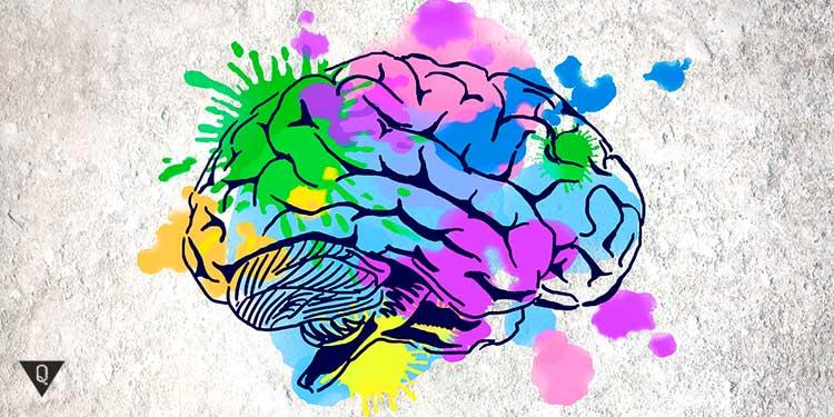 нарисованный красками мозг человека