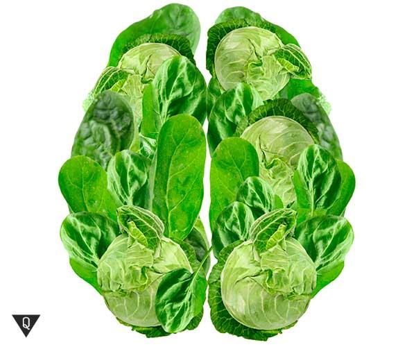 овощи и зелень в форме мозга