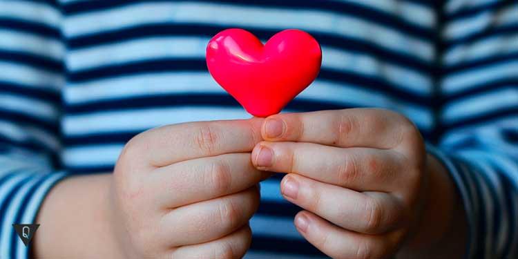 ребенок держит в руках игрушечное сердце