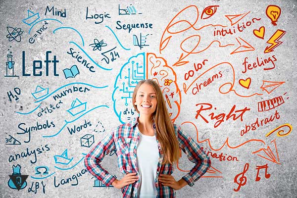 нарисованные функции полушарий мозга девушки