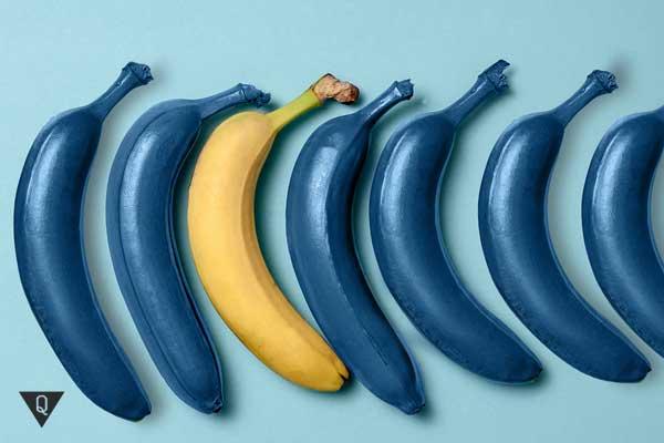Синие бананы и один желтый на столе голубого цвета