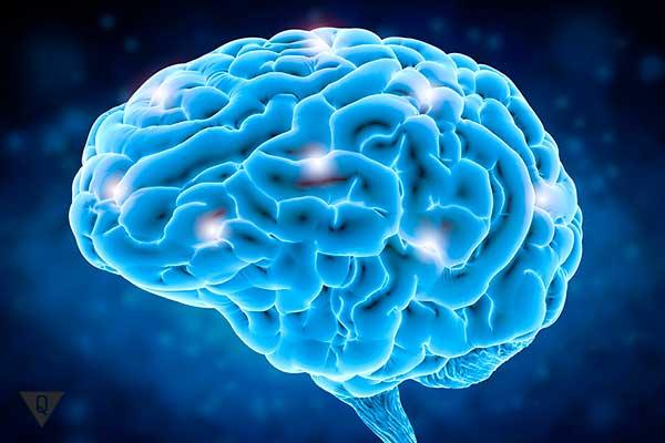 электрические сигналы в мозге человека