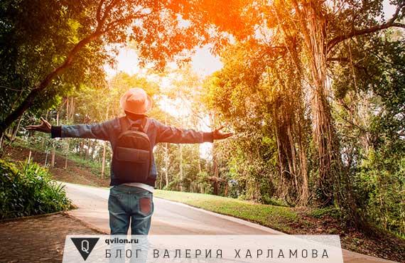 человек в лесу на дороге