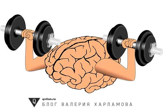 мозг качается гантелями
