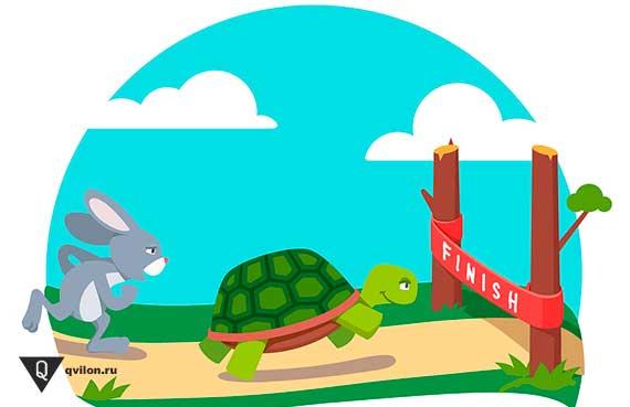 черепаха на финише быстрее зайца