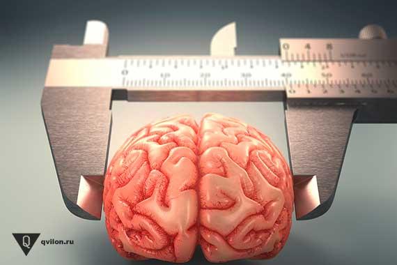 штангельциркуль измеряет мозг