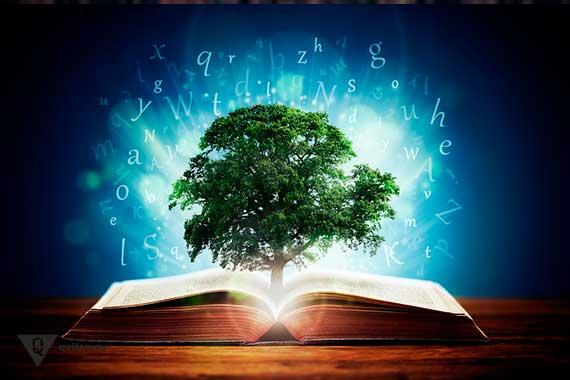 из открытой книги растет дерево и идет яркий свет