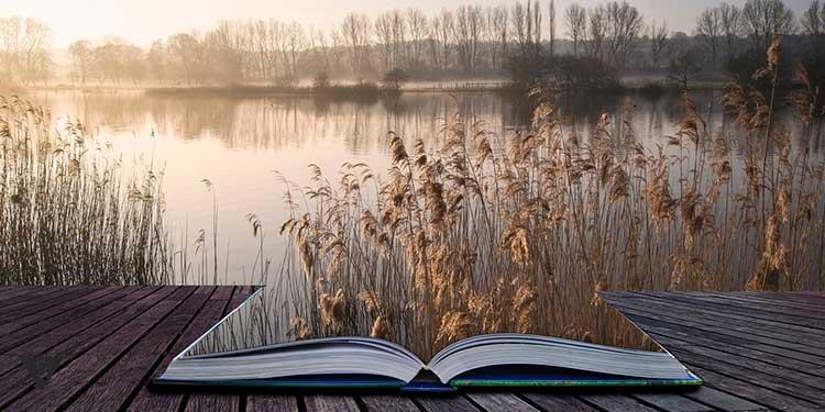 пейзаж озера оживает из книги