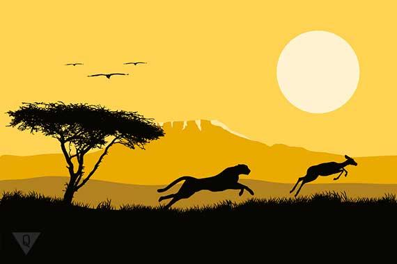 ягуар охотится