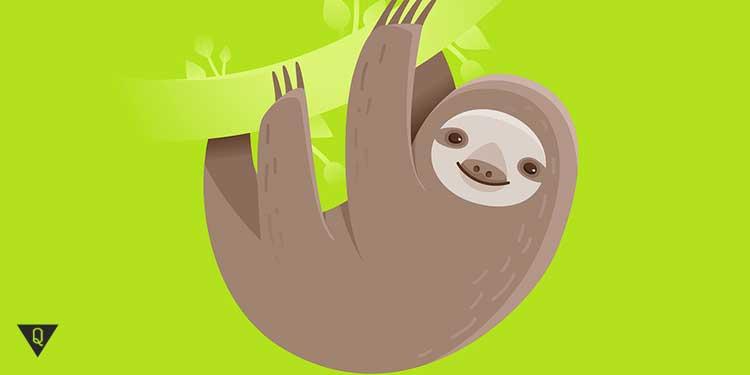 нарисованный ленивец на зеленом фоне