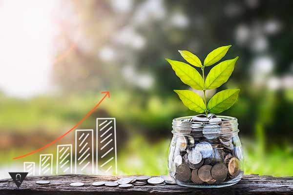 Создание денежного дерева