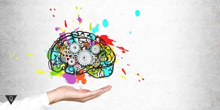 Мозг из разноцветных механизмов, как объяснение эффекта новизны.