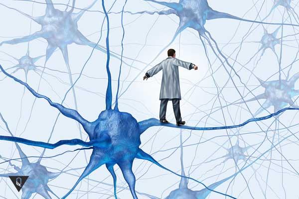 По нейронам идет человек