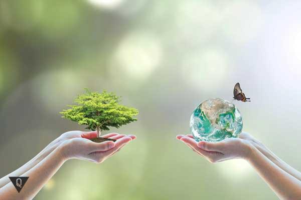 Два человека держат в ладошках дерево и планету с бабочкой