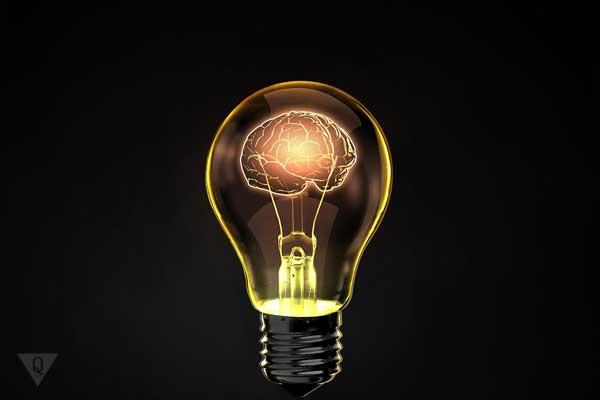 Лампочка с мозгом внутри, символ того, как заставить мозг работать быстрее и эффективнее