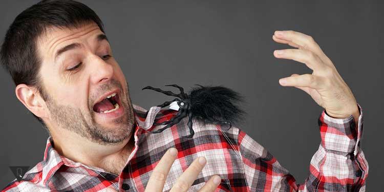 У мужчины на плече сидит паук и он его испугался