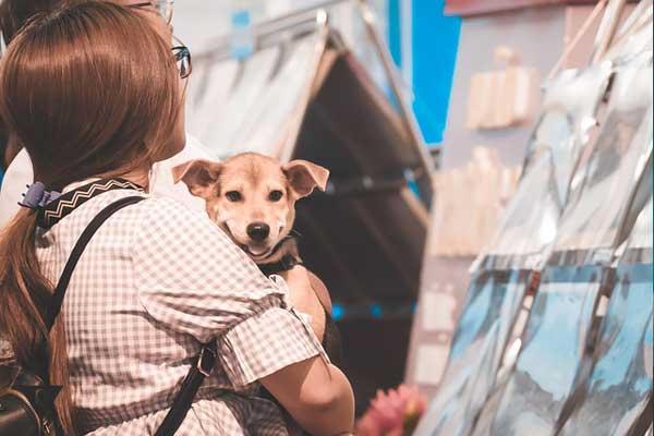 Девочка с собакой на руках