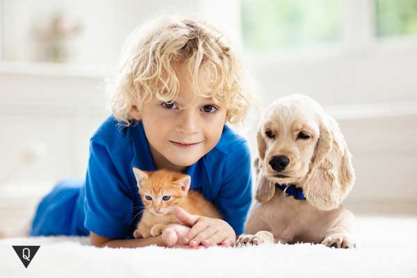 Мальчик с животными
